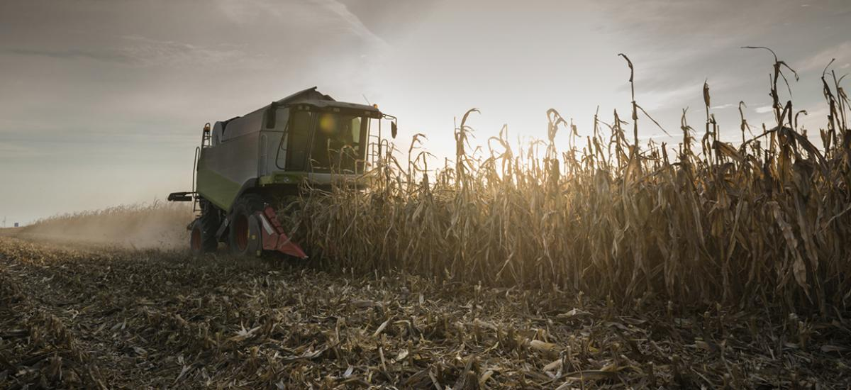Urban Farming Michigan, the food and agricultureindustry ranks among the state's top industries